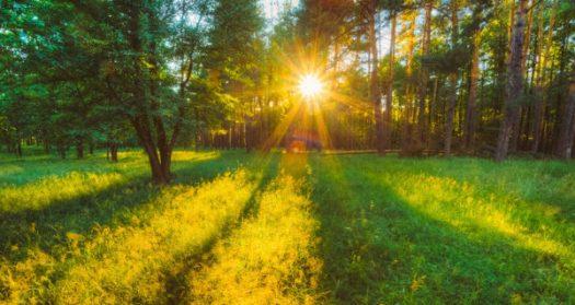 summer-solstice-2016-600x319.jpg